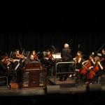 Javier Artigas en el Concierto de Año Nuevo 2014-2
